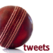 Cricket Tweets 2011: WorldCup Edition - Twitter updates and WorldCup n